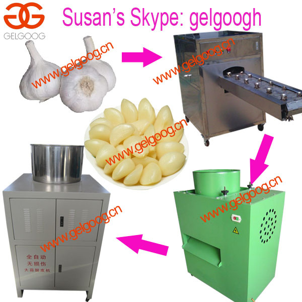 Price of Garlic Peeling Machine|Garlic Separator Machine