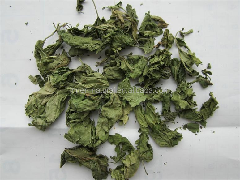 Mulberry leaves extract DNJ powder 2%