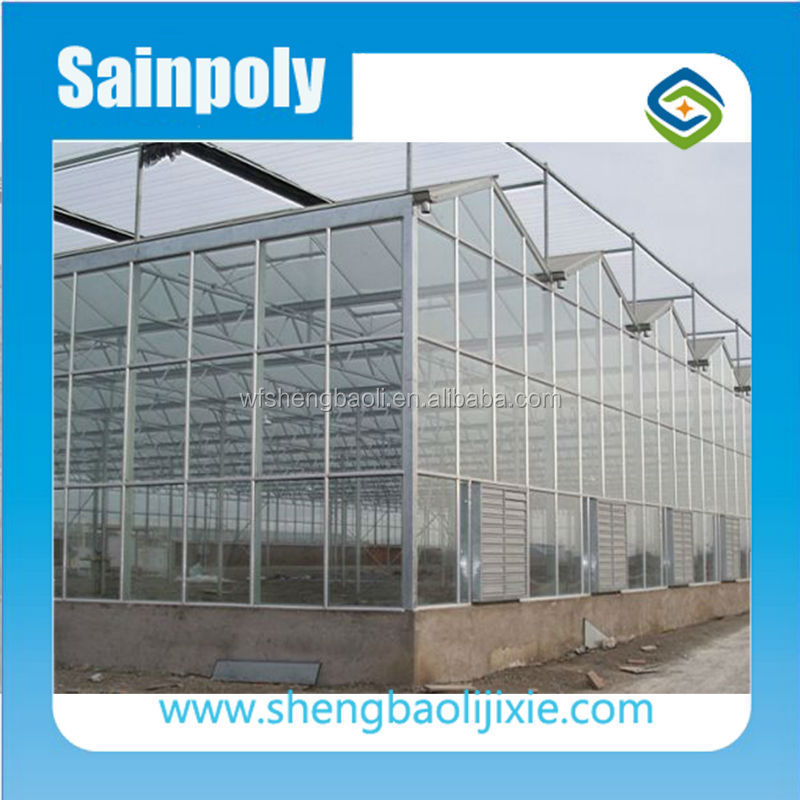 Hot Sale the Cheapest and Easily Assembled Agricultural Venlo Greenhouse for sale
