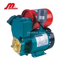 Motor 0.32hp 0.16hp Single Phase Central Machinery Water Pump