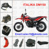 good credit of motorcycle parts/accessories for ITALIKA DM150 with stable quality and competitive price