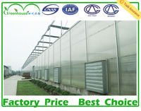 low cost tunnel green house for sale