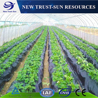 Agriculture Hoop House Tomato Plastic Film