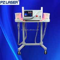 The biggest manufacturer lipo laser machine for home use