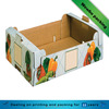 Fany high quality colored corrugated fruits vegetables hard tray carton box