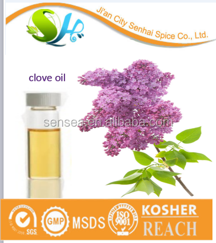 China manufacturer sale pure essential oil clove oil with top quality