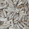 factory supply organic sunflower seed market ton price