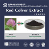 cancer prevention red clover extract with Isoflavone