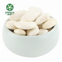 Bulk Lima Beans Big Size White Kidney Bean for Sale