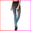 factory supply best price lycra Women lady Fitness Sports Leggings