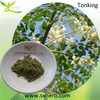 Food&health care Food Grade Moringa Leaf extract capsules Moringa powder