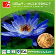 10:1 blue lotus leaves extract powder by TCL