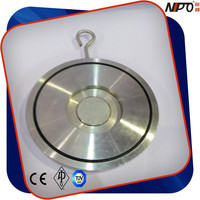 Single Door Wafer Type Check Valve