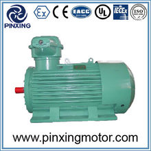 Competitive price new style 10kv high voltage motor