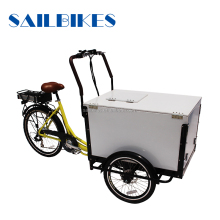 ice cream cargo tricycle bike refrigerator electric delivery tricycle