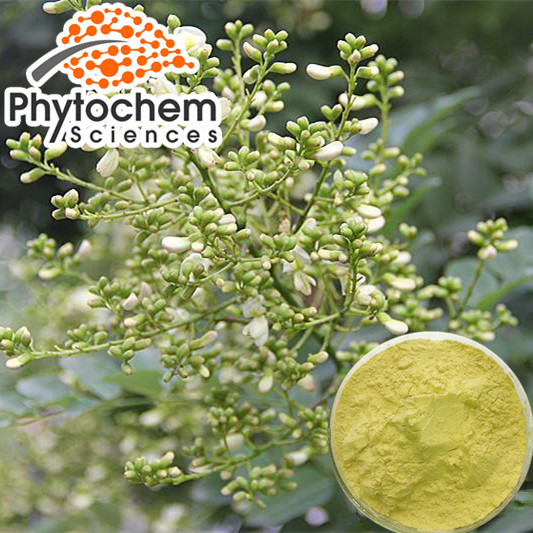 Natural Sophora Japonica Extract Powder 95%-98% Quercetin Dihydrate 95% Rutin