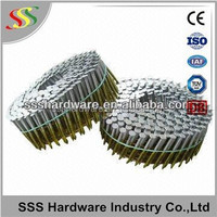 Stainless steel Twist Shank Coil nail