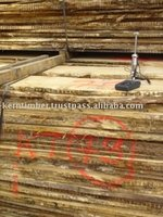 NEW SEASON German White Oak Lumber FSC