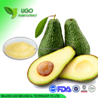 Factory Provide 100% Nature Persea Americana Extract/ Avocado Extract