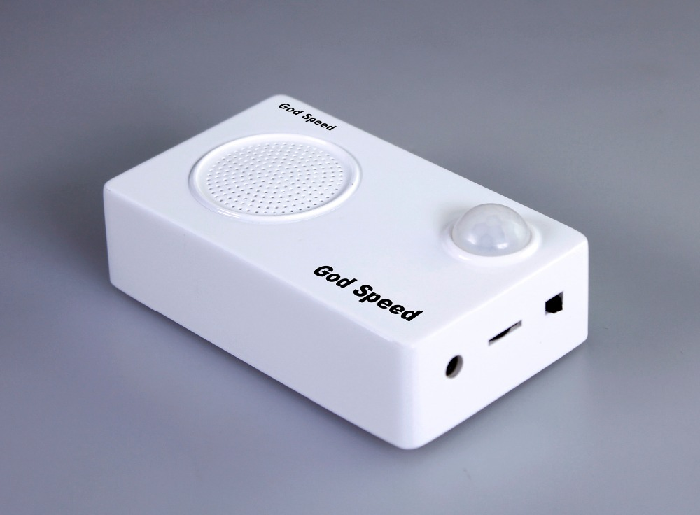OEM model motion activated voice player box sound system