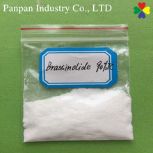 Plant growth regulator brassinosteroid 72962-43-7 for fruit trees raw steroid powder brassinolide