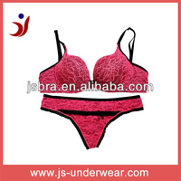 very sexy lingerie hot, charm rose embroidery nylon bra and panties