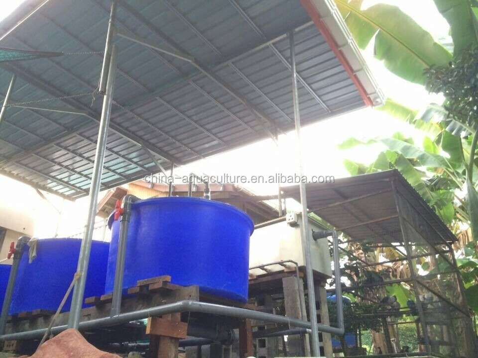 Indoor aquaculture farms for Indoor fishing