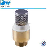 Brass Spring Check Valve With Filter
