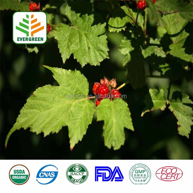 Factory supply 1.8% Vitexin-2-0-Rhamnoside Hawthorn Berry Fruit Leaf Extract