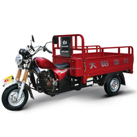 Best-selling Tricycle 200cc pedal rickshaw made in china with 1000kgs loading Capacity