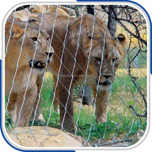 Stainless Steel Wire Rope Mesh for Tigers and Lions Enclosure Protection