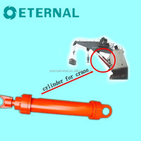Heavy Duty Hydraulic Cylinder for Crane V195