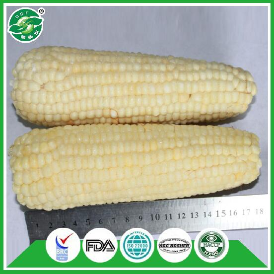 standard exported packing pass FDA best china all kinds of frozen sweet corn