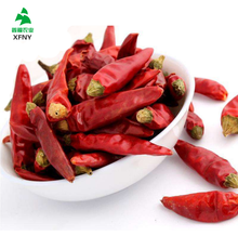 Wholesale High Quality Hot Dry Red Chillies