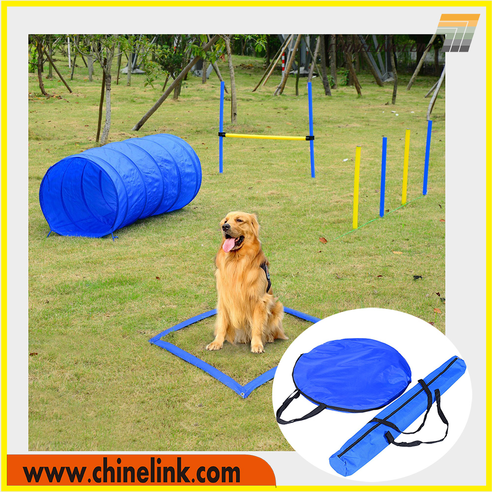Pet Agility Training Equipment Dog Play Run Jump Obedience Set