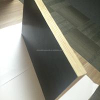 Laminated Plywood Vietnam Plywood Fancy Plywood