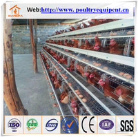 chicken cage plans hot sale