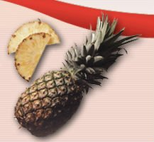 Aseptic Pineapple Puree