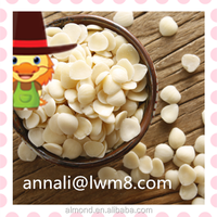 Best price new organic blanched apricot kernels, almond for sale.