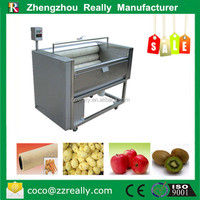 Fruit and Vegetable Processing Machines Stainless Steel Ginger Cleaning Peeling