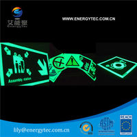 Screen Printing/ Fire Safety Sign/ Road Direction Photoluminescent pigment/ Glow in the dark Powder