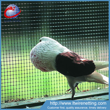 cheap price galvanized welded rabbit cage wire mesh/bird cage wire mesh
