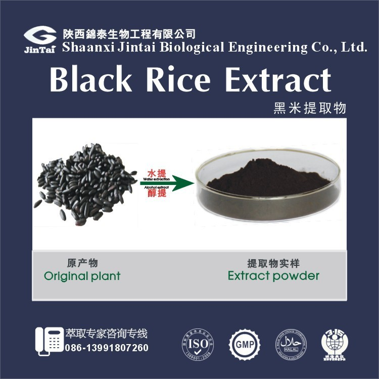 Natural purple rice powder Black rice Extract powder