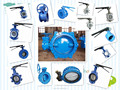 Series F101 Lug Type Butterfly Valve