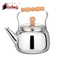 Hot Promotional Stainless Steel Teapot With Special Handle