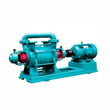 Manufacturer Electricity Single Stage Water Ring Vacuum Pump