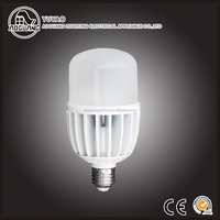 Competitive Price 220 Volts Warm White Led Bulb