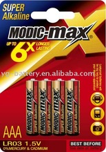AAA Alkaline Battery LR03