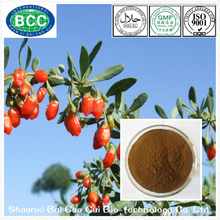 Anti-Tumor Product Goji Berries Organic Plant Extract