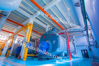 Low nitrogen gas fired hot water boiler for vegetable greenhouse in Russia